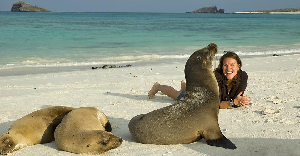 Galapagos sea lions, Española, Galapagos Islands, Ecuador