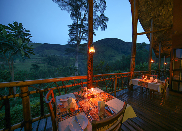 Mahogany Springs Lodge Bwindi Impenetrable National Park Uganda
