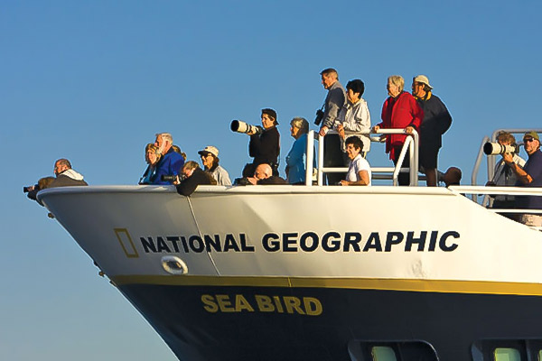 Whale watching, National Geographic Sea Bird, Baja cruises