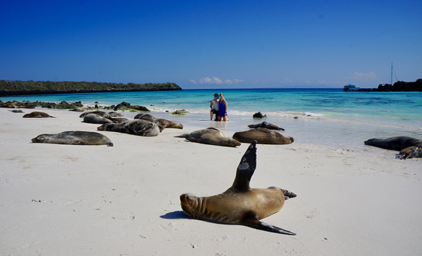 Sisters with sea lions in the Galapagos.