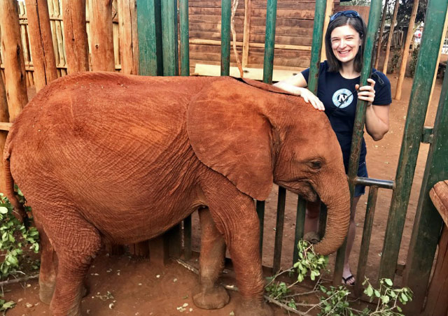 Me and my adopted elephant at the David Sheldrick Wildlife Trust Elephant Orphanage in Kenya.