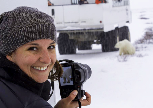 Photographing polar bear aboard a massive polar rover outside of Churchill, MB Canada. Photo credit: Brad Josephs