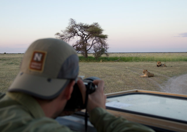 There is magic in the Kalahari.  Photographing lions just yards away is one of many many highlights