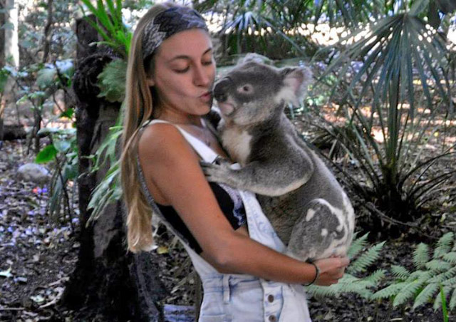 Getting koala kissed in the Lone Pine Koala Sanctuary in Queensland, Australia.