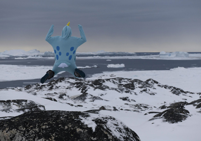 An epic narwhal sighting in Greenland.