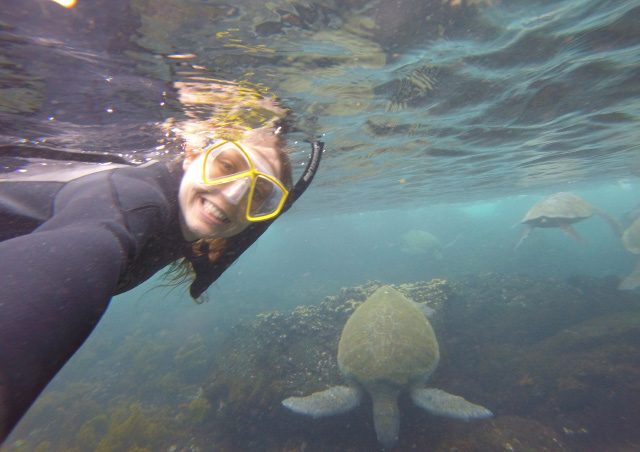 My selfie with a sea turtles off of the coast of Isabela Island in the Galapagos