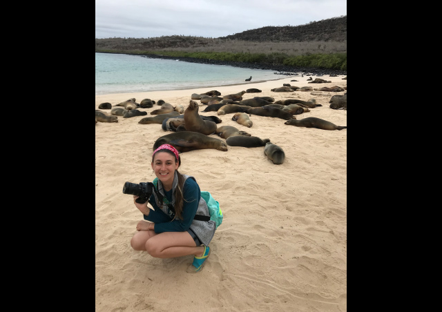 Hanging with a group of sea lions on this Galapagos beach