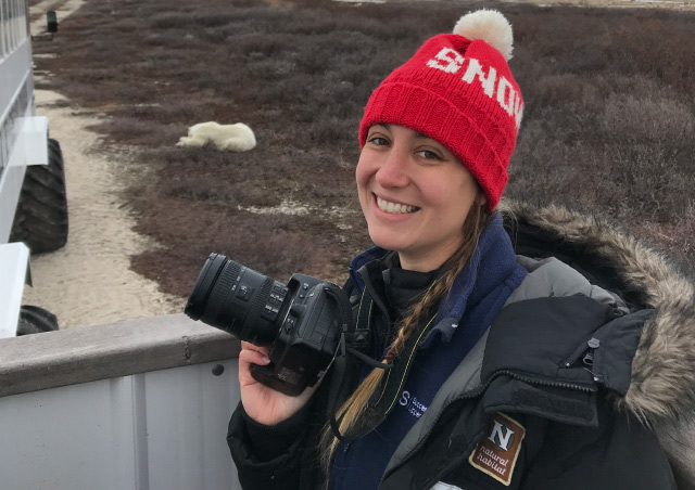 Photographing polar bears at the Tundra Lodge.