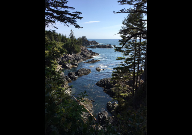This was one of the stunning views from the Wild Pacific Trail in Ucluelet (Vancouver Island)