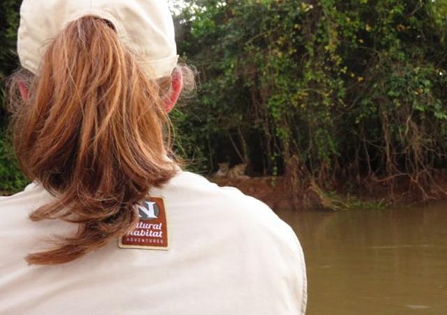 Watching jaguars in the Pantanal