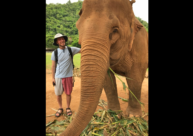 Playing with Elephants in Chang Mai, Thailand.