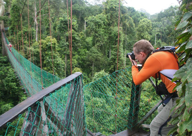 One of my favorite assignments is to set up brand new destinations, and I had the chance to do just that in Borneo. The primary rainforest in Sabah is absolutely awe-inspiring, and seeing Proboscis monkeys and Orangutans in the wild was fantastic. The combination of fascinating culture and diverse wildlife make Borneo a destination that we can't wait to offer!
