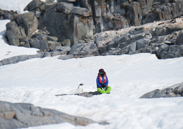 Sara meets a Gentoo in Antarctica. Photo Credit: Colby Brokvist