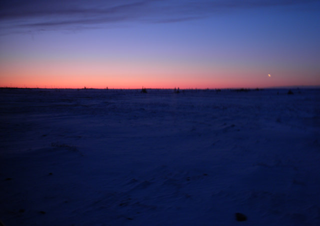 Twilight falls over the Churchill tundra, ushering in a long November night.