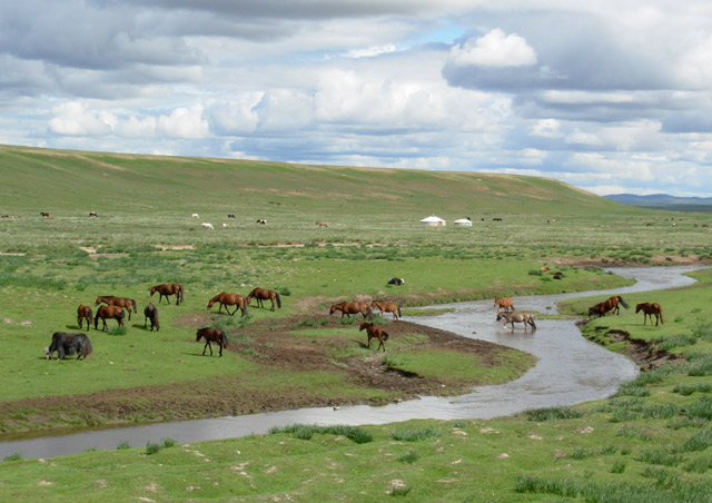 Big sky, green steppe and grazing horses are iconic Mongolia. This is a classic scene not far from the site of Genghis Khan's ancient capital of Karakorum.