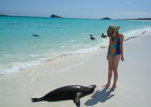 My daughter, Bryn, makes a new friend at Gardner Bay on Espanola. Galapagos wildlife is completely nonchalant about human presence!