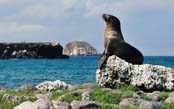 Lodge-Based Galapagos Adventure