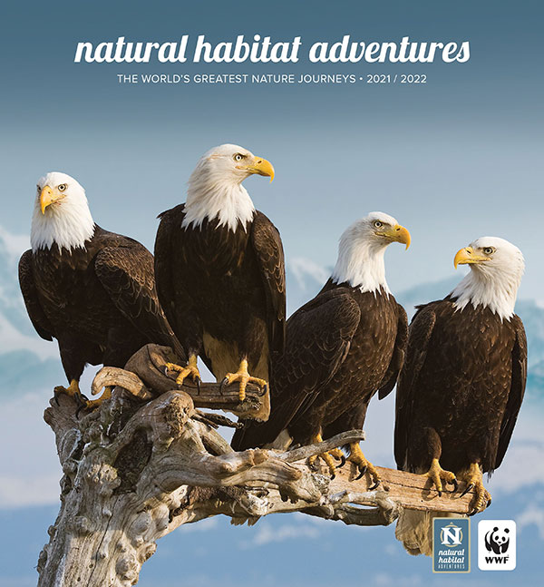 Natural Habitat Adventures 2019 Catalog