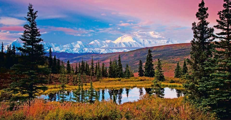 Denali Tour Alaska Adventure Tours Natural Habitat