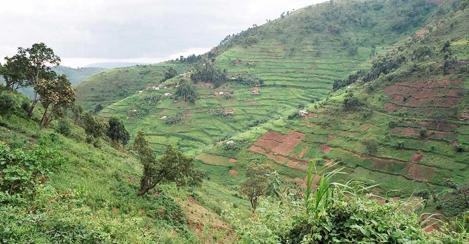 Countryside, Uganda