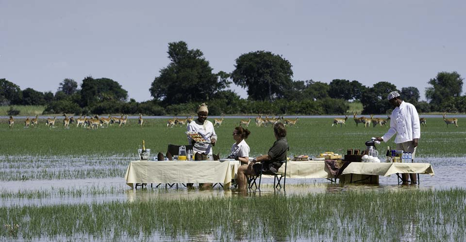 Bush lunch, Okavango Delta, Botswana