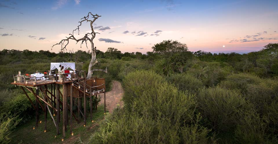 Chalkley tree house, Lion Sands Game Reserve, South Africa