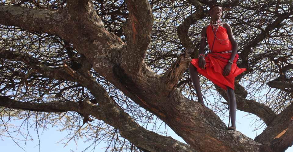 Maasai warrior, Lewa Wildlife Conservancy, Kenya