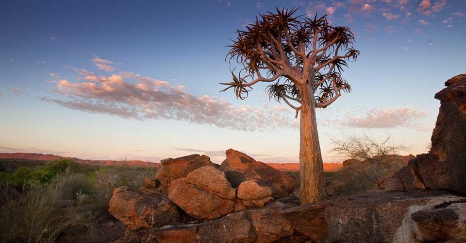 Tswalu Kalahari Reserve, South Africa
