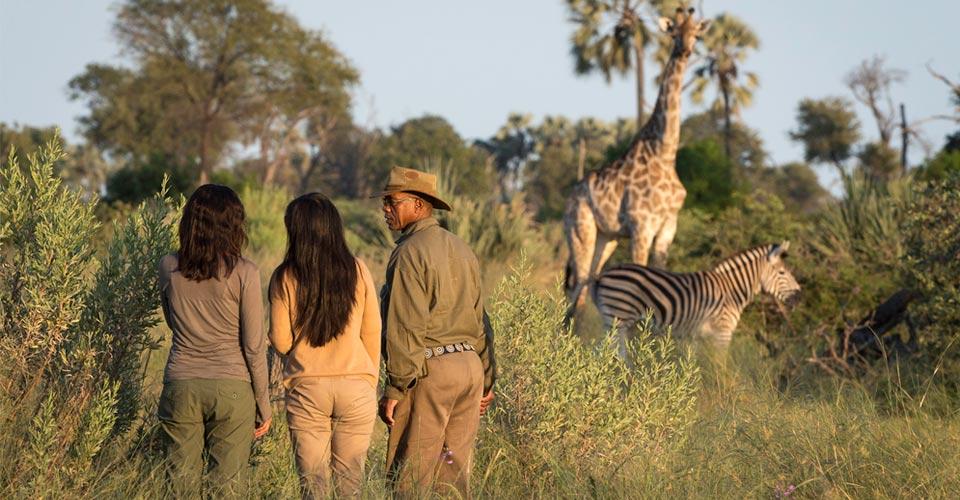 Safari walk, Okavango Delta, Botswana