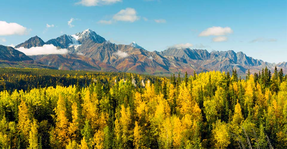 Chugach Mountains, Chugach National Forest