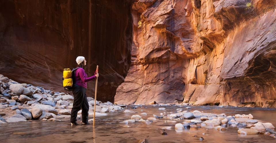 Usa Zion National Park Utah
