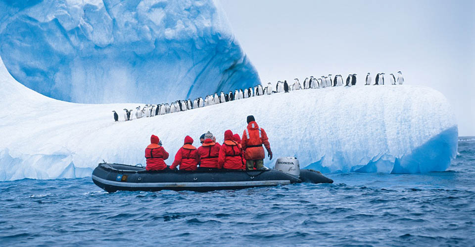 Antarctica tour adventure cruises for Best way to travel to antarctica