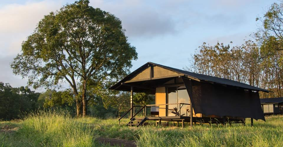 A tented room at Natural Habitat's Tortoise Camp, Santa Cruz, Galapagos Islands, Ecuador