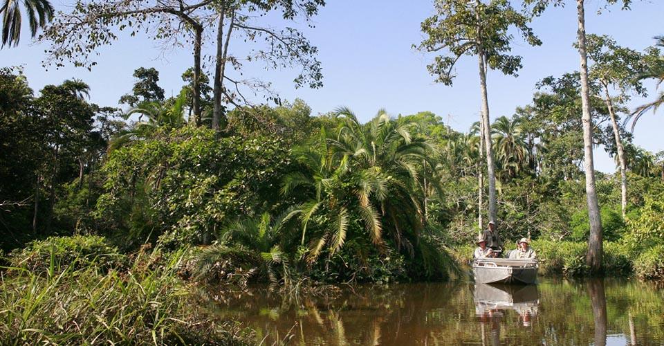 Lekoli River, Odzala-Kokoua National Park, Congo