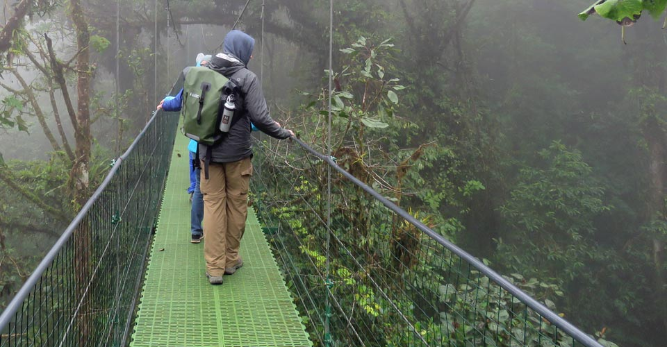 Hanging bridges, Monteverde