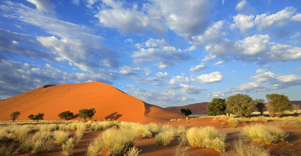 Botswana Namibia Safari African Safaris Natural