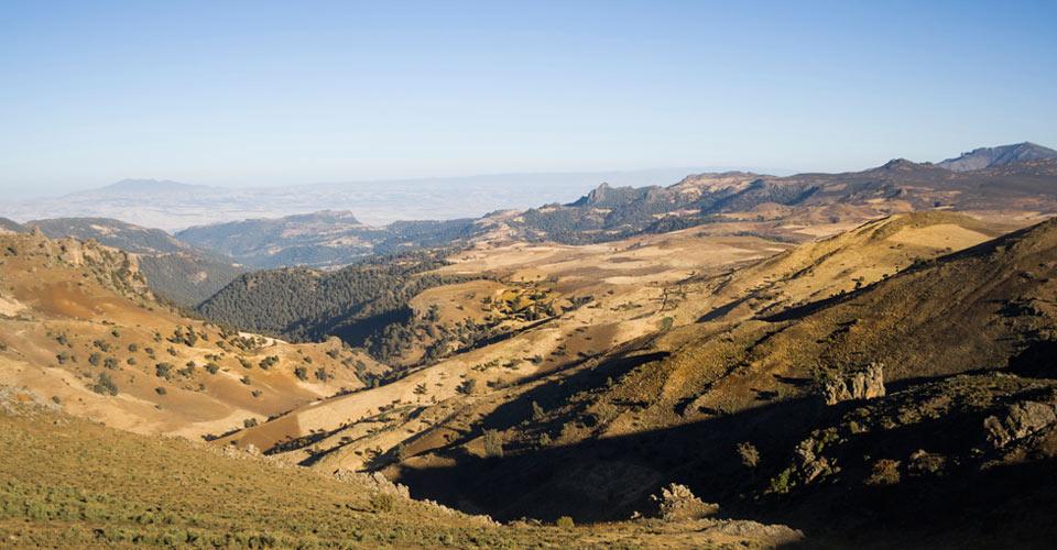Natural Habitat Adventures Africa Wild Ethiopia The
