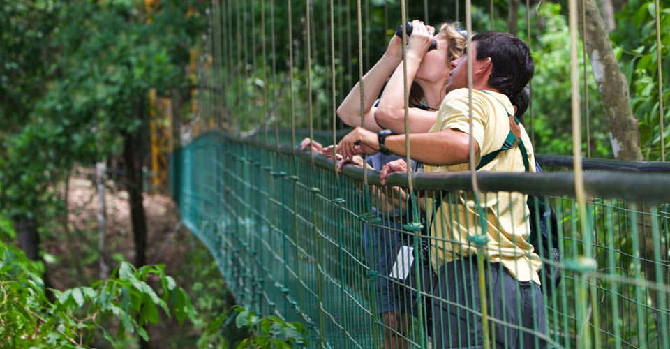 Arenal rainforest, Costa Rica