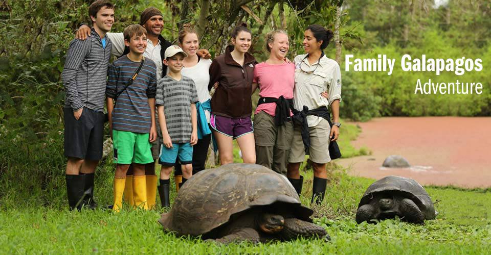 Galapagos tortoises, Santa Cruz, Galapagos Islands, Ecuador