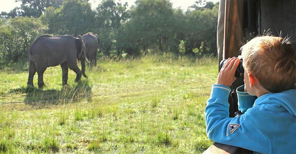 Young traveler on game drive, Maasai Mara, Kenya