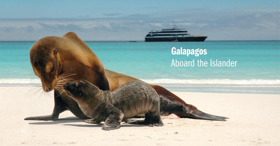 Galapagos Wildlife Cruise Natural Habitat Adventures