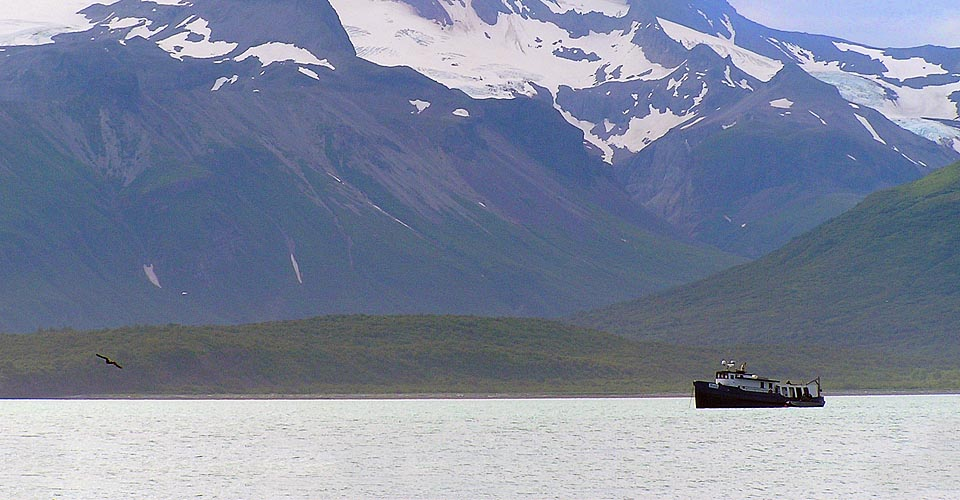 Our Grizzly Ship, Katmai National Park, Alaska, USA