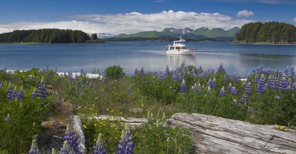Kodiak, Alaska, USA