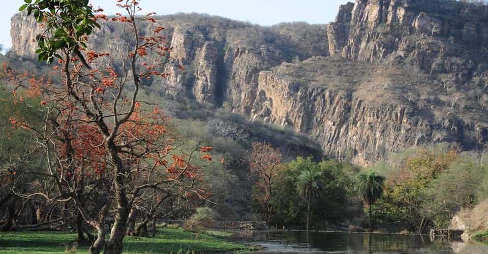 Ranthambore National Park, India