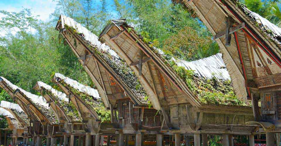 Traditional houses, Toraja, South Sulawesi, Sulawesi Island