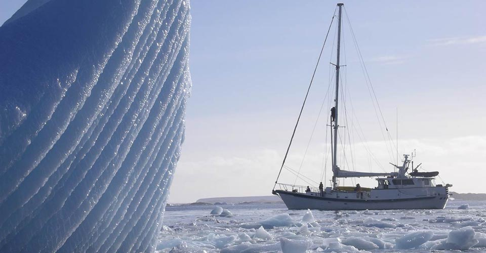 Sailing Antarctica: The Ultimate Polar Nature Expedition