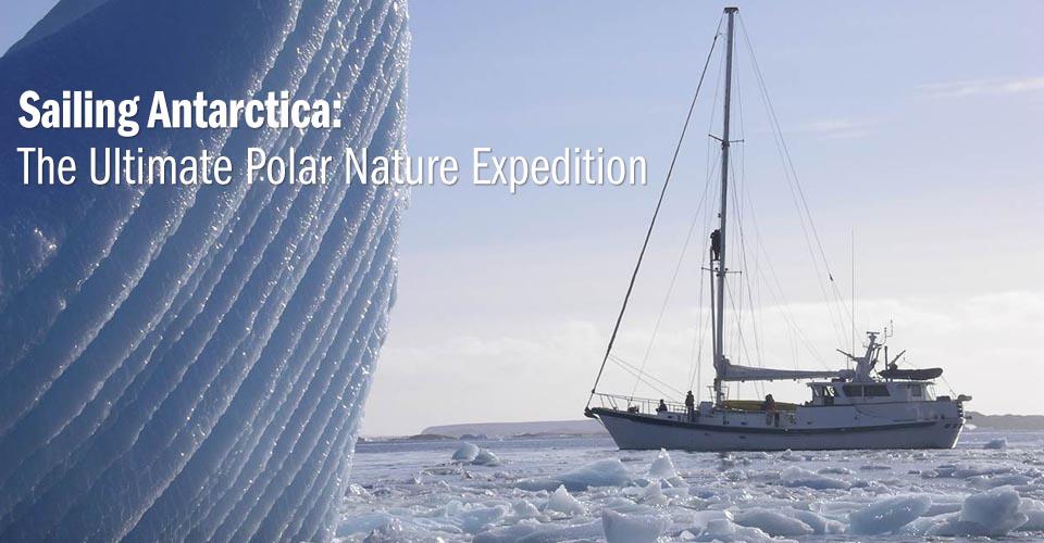 S/V Australis, Penola Strait, Antarctica