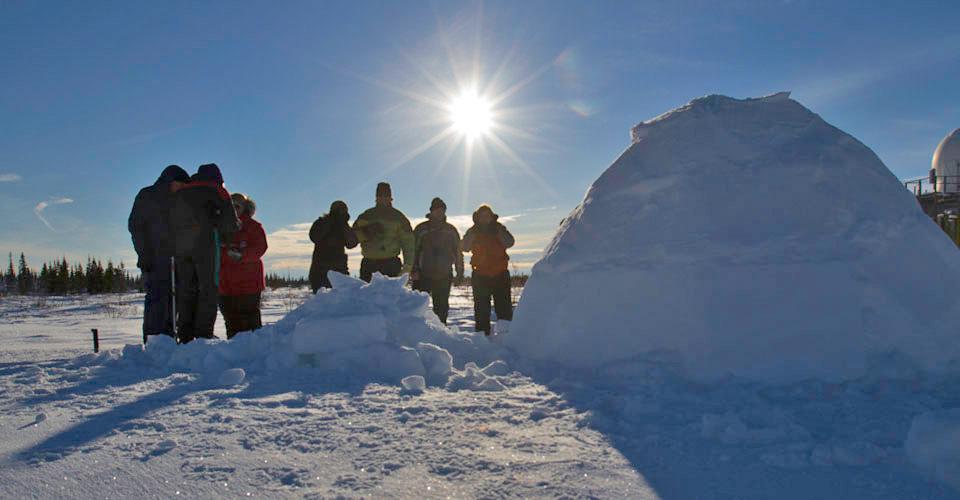 Northern Lights Tour Churchill Arctic Adventures