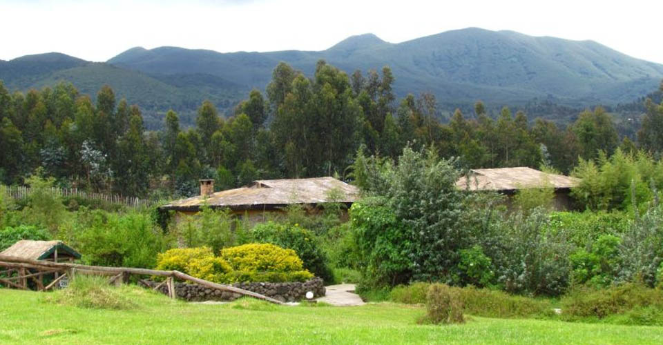 Mountain Gorilla View Lodge, Rwanda