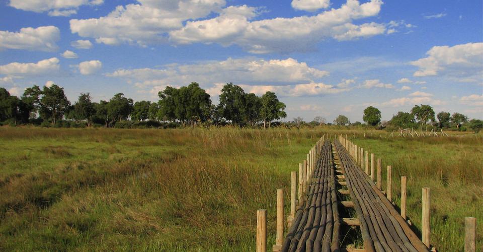 Botswana Trip African Safaris Natural Habitat Adventures